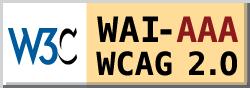logo-wcag2.0
